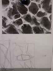 This was a mess... See how the stange medication microscope image was changed into form?