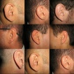 http://www.yalescientific.org/wp-content/uploads/2011/05/features-ears-1.jpg