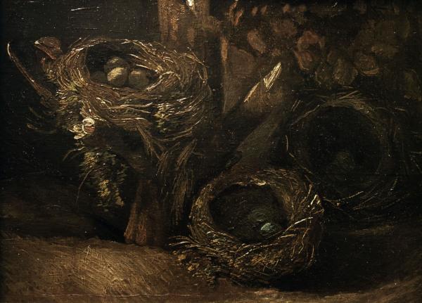 Vincent Van Gogh's BEAUTIFUL Nests: http://66.media.tumblr.com/980f8013c2c35c3e845bade1721c5f82/tumblr_nj8rr2Oxuz1slb5k6o2_1280.jpg