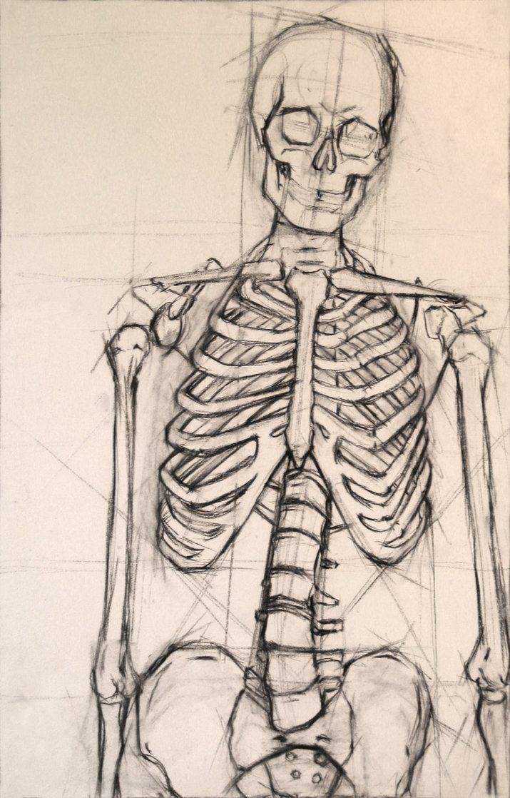 Skeleton Isolation Drawing - Look at the GUIDELINES that this artist has started using. https://s-media-cache-ak0.pinimg.com/736x/07/a4/fa/07a4fa086f136d458ea1ccfc06fb53e3.jpg