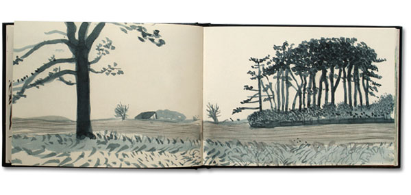 David Hockney Pages from his Sketchbook: https://s-media-cache-ak0.pinimg.com/originals/30/96/6d/30966dc44976c035f99c163466e25e60.jpg