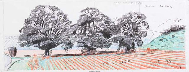 Let's look to David Hockney for our inspiration in our landscapes! http://www.hockneypictures.com/images/3-works/2-drawings/OO/large/08B25-lg.jpg