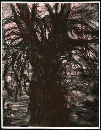 Jim Dine: Observational Drawings: BIG TREE! http://cdn0.walkerart.org/public/collections-thumbs/wac_5035/340x438.jpeg
